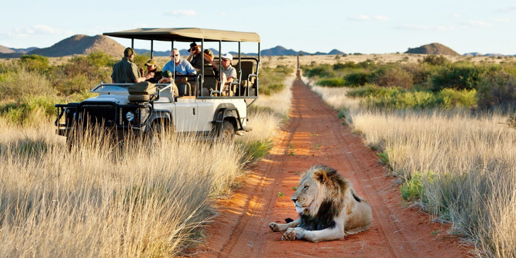 tribe travel - South African tourism